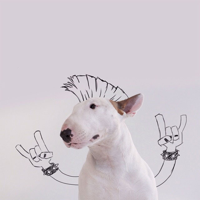 dog-interactive-illustrations-jimmy-choo-rafael-mantesso-21