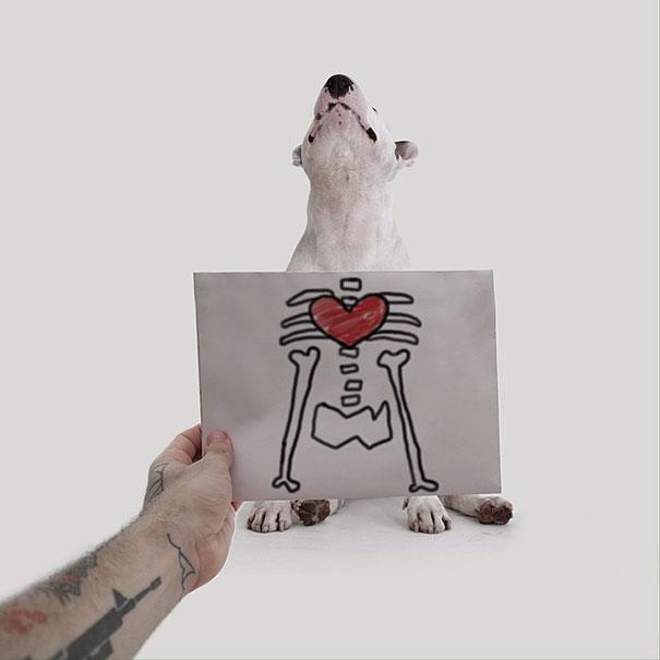dog-interactive-illustrations-jimmy-choo-rafael-mantesso-5