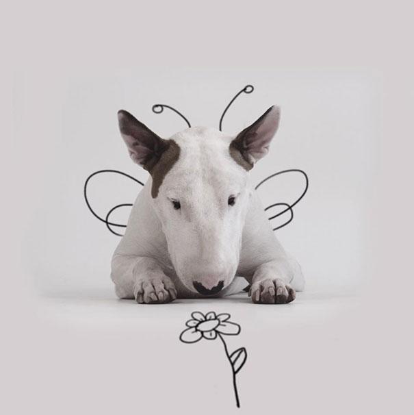 dog-interactive-illustrations-jimmy-choo-rafael-mantesso-9