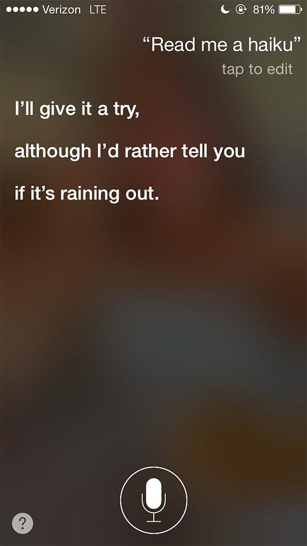 funny-honest-siri-answers-will-haskell-16