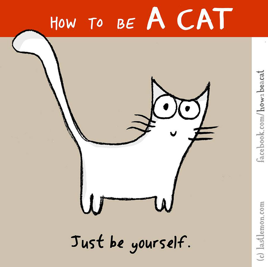 funny-illustration-guide-how-to-be-cat-lisa-swerling-ralph-lazar-29