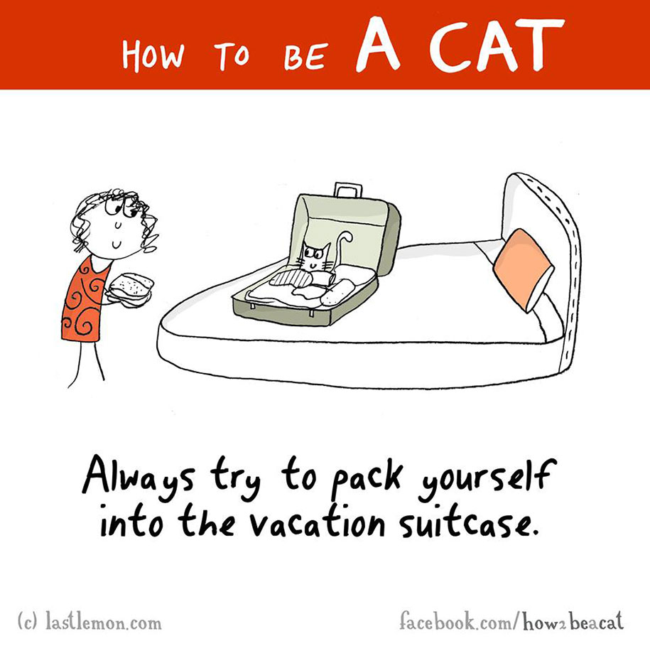 funny-illustration-guide-how-to-be-cat-lisa-swerling-ralph-lazar-5
