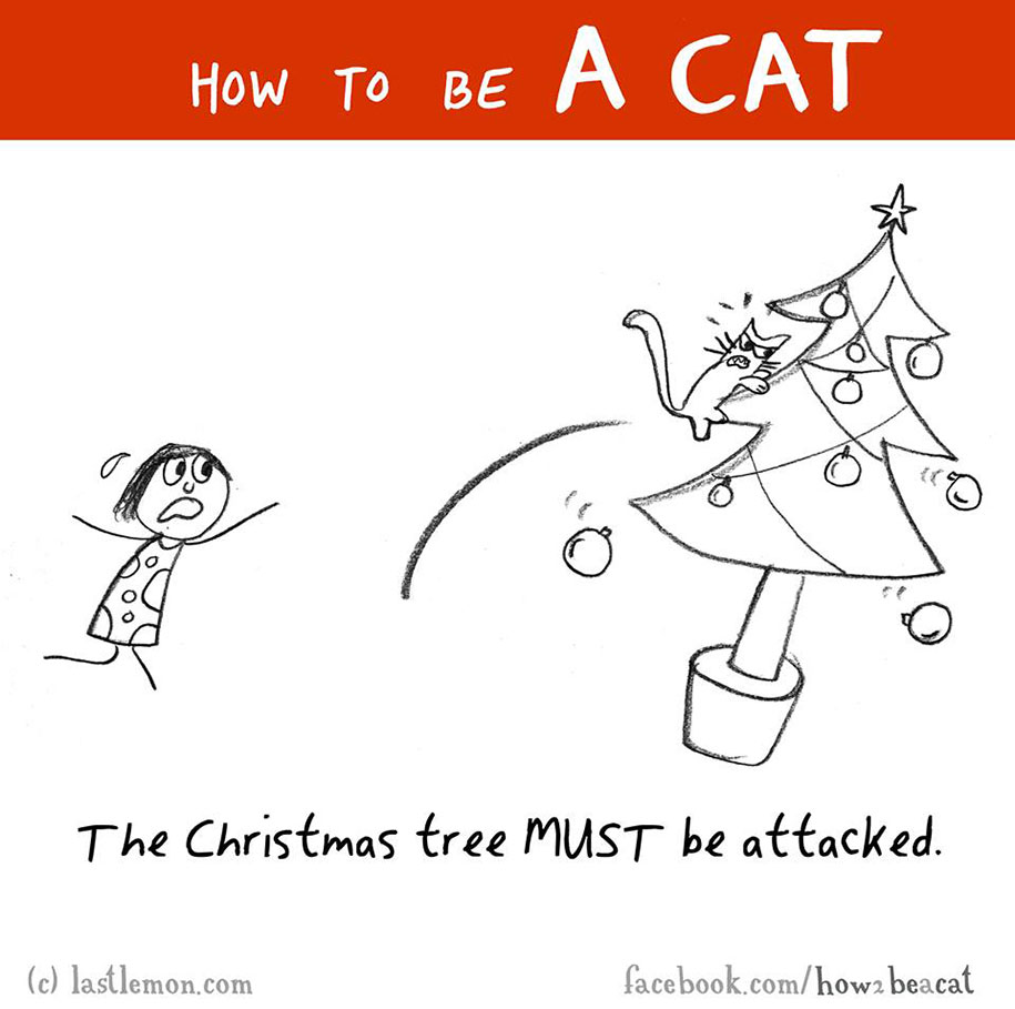 funny-illustration-guide-how-to-be-cat-lisa-swerling-ralph-lazar-77