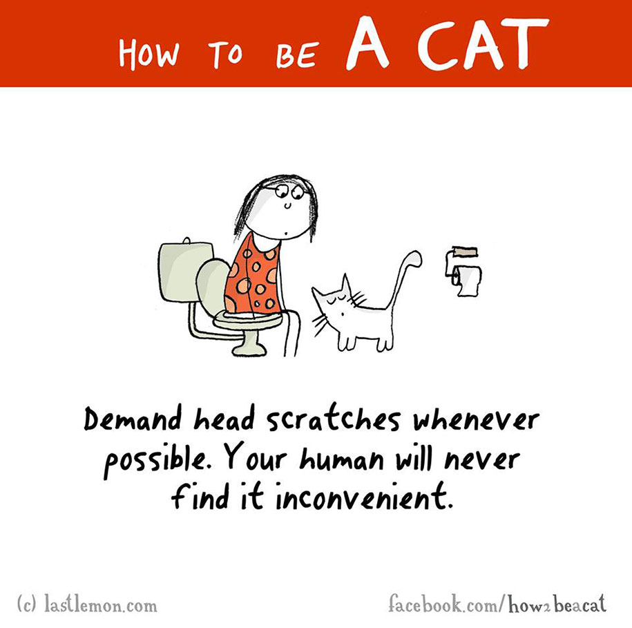funny-illustration-guide-how-to-be-cat-lisa-swerling-ralph-lazar-88