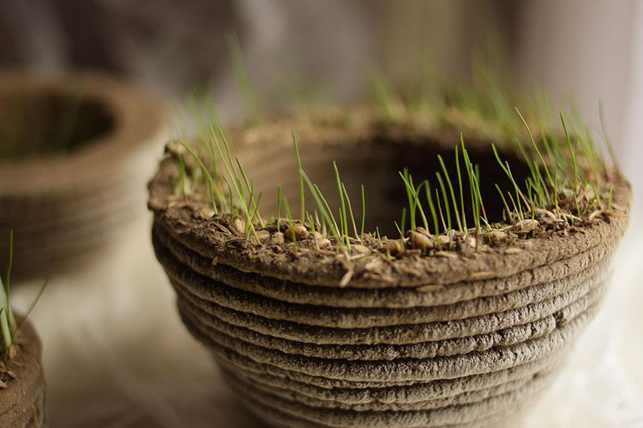 green-printer-soil-grass-garden-printgreen-university-maribor-slovenia-2