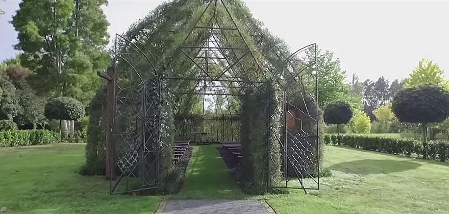 living-growing-instalation-tree-church-barry-cox-2