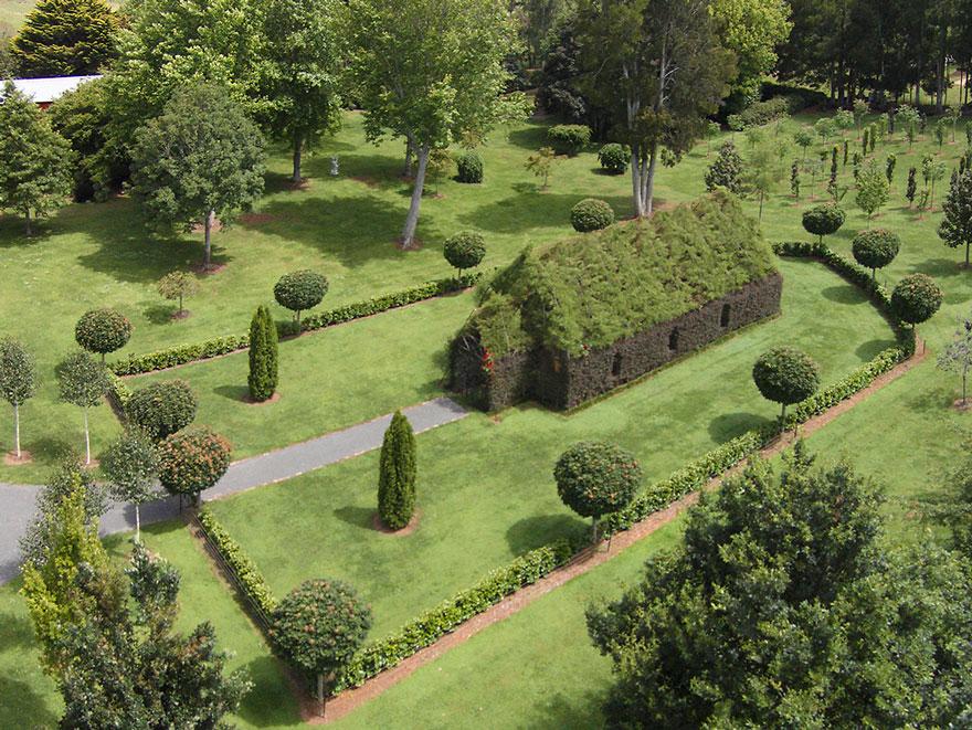 living-growing-instalation-tree-church-barry-cox-3