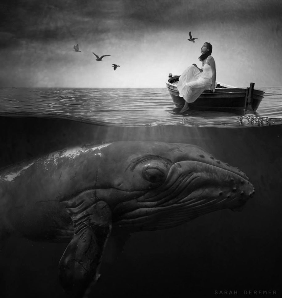 strange-animal-hybrids-surreal-experiments-sarah-deremer-1