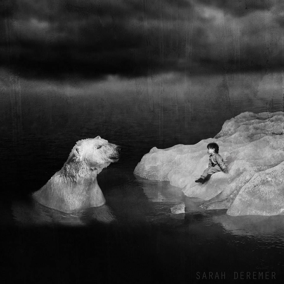 strange-animal-hybrids-surreal-experiments-sarah-deremer-9