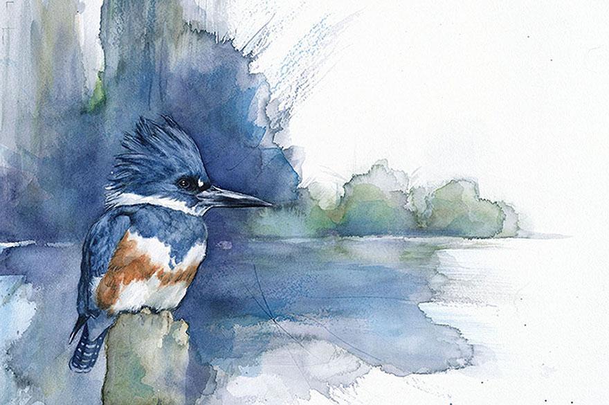 biologist-waterpainting-birds-anne-balogh-2