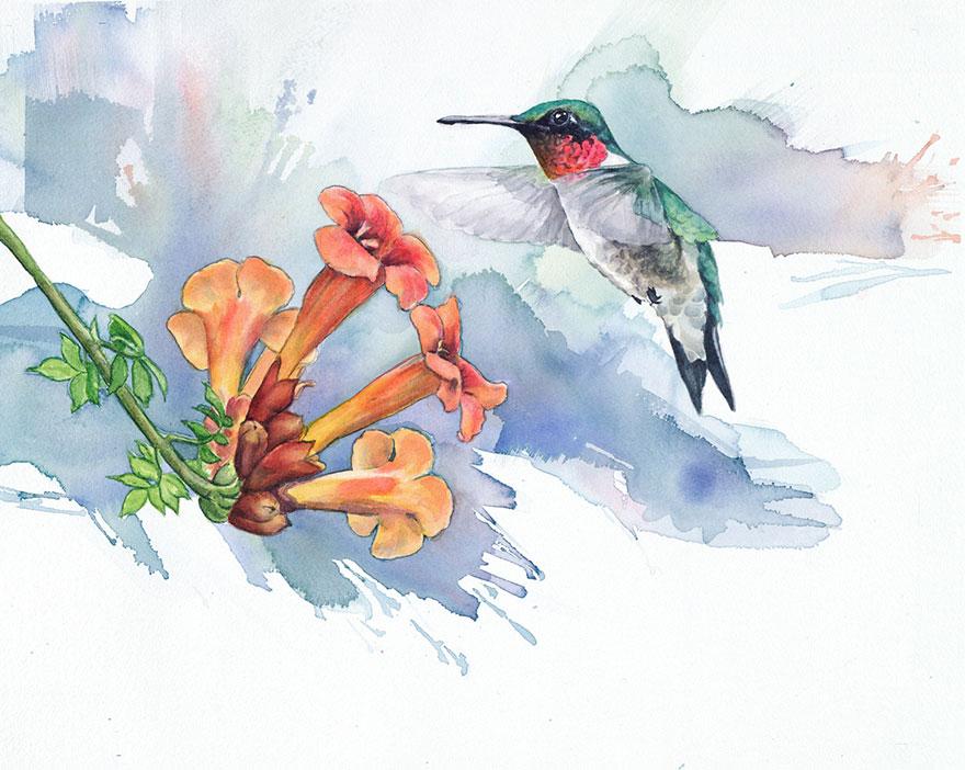 biologist-waterpainting-birds-anne-balogh-6
