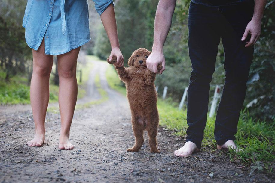 tired-baby-questions-dog-newborn-photoshoot-elisha-minnette-photography-9