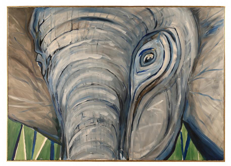 Borneo Elephant / Gajah Kalimantan