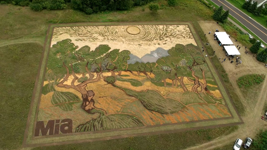 eathworks-seed-art-van-gogh-olive-trees-field-stan-herd-minneapolis-20