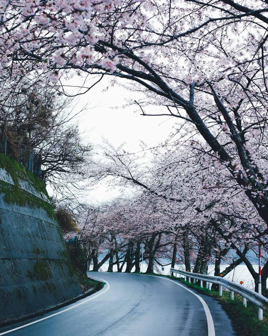 everyday-magic-street-photos-kyoto-takashi-yasui-japan-11