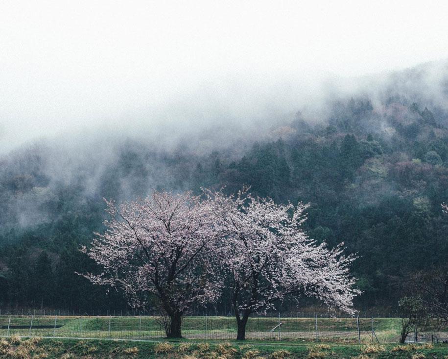 everyday-magic-street-photos-kyoto-takashi-yasui-japan-12