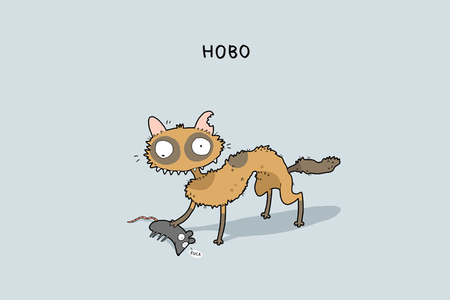 animal-illustrations-12-types-cats-lingvistov-8