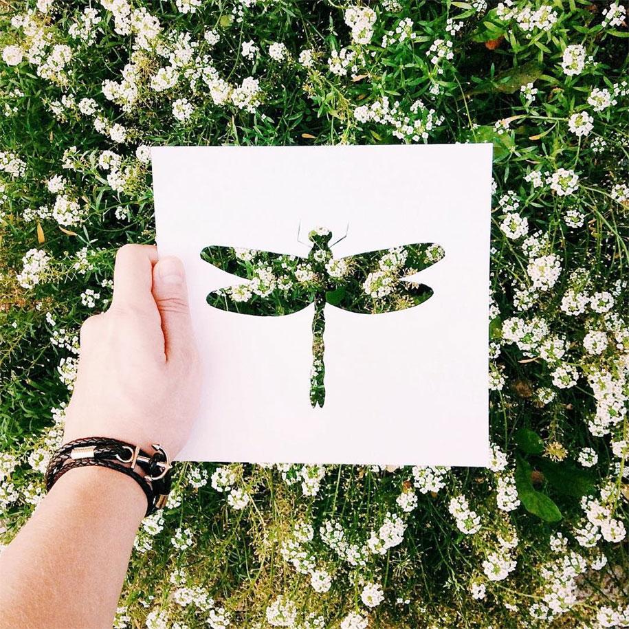 animal-paper-cutout-silhouettes-nikolai-tolstyh -2