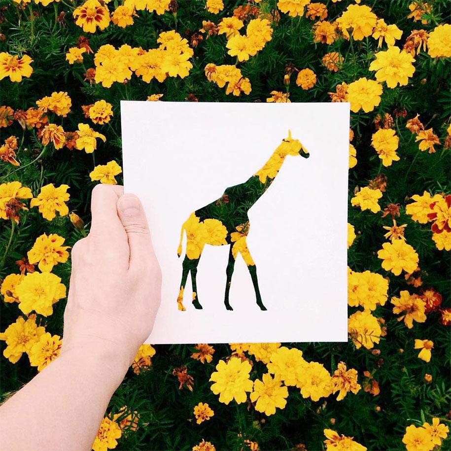 animal-paper-cutout-silhouettes-nikolai-tolstyh -3