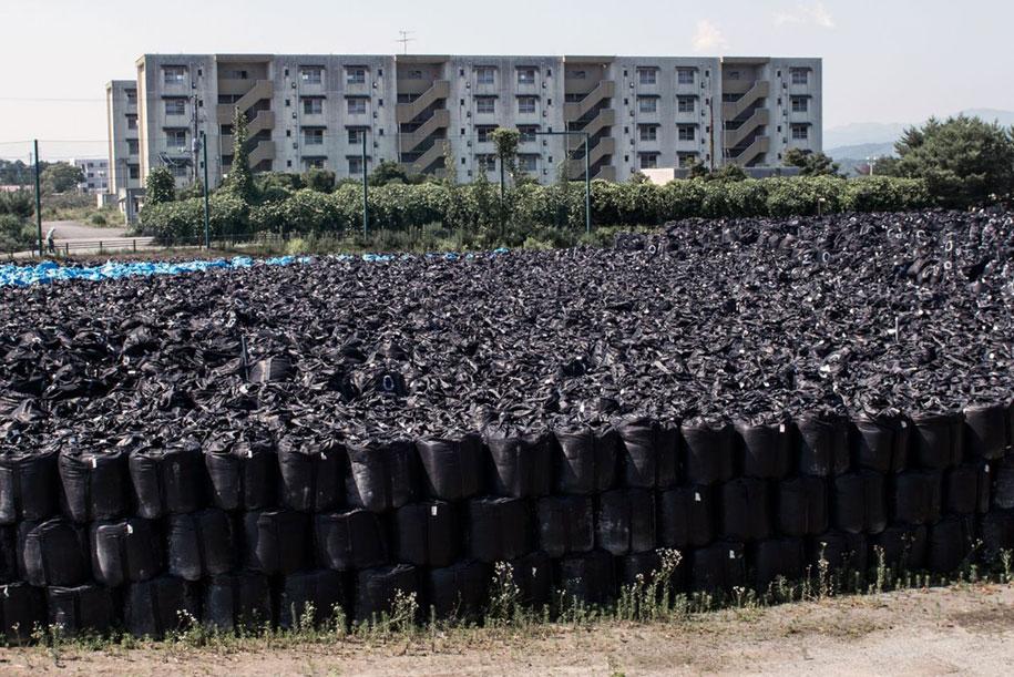 nature-reclaim-fukushima-exclusion-zone-photos-arkadiusz-podniesinski-13