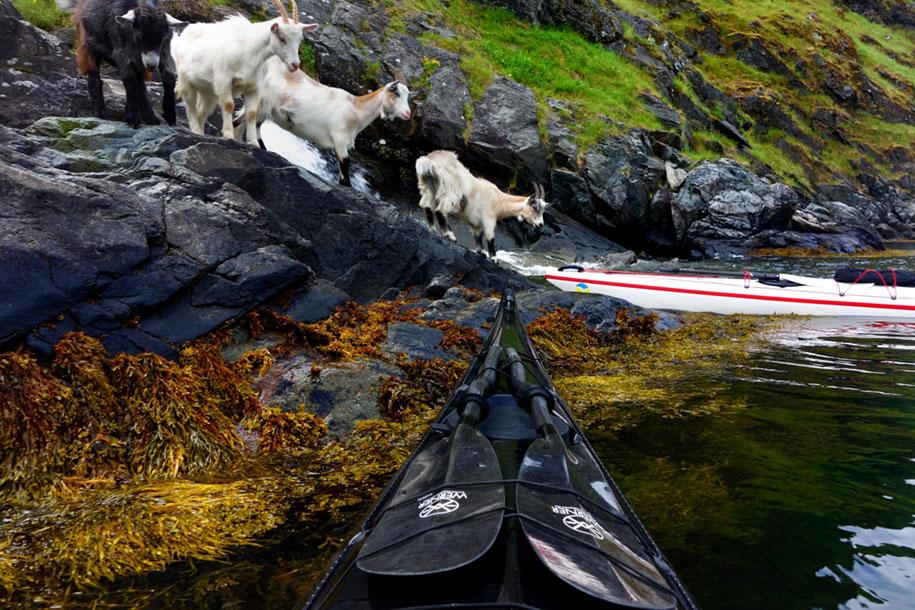 nature-travel-kayak-photography-fjords-tomasz-furmanek-norway15