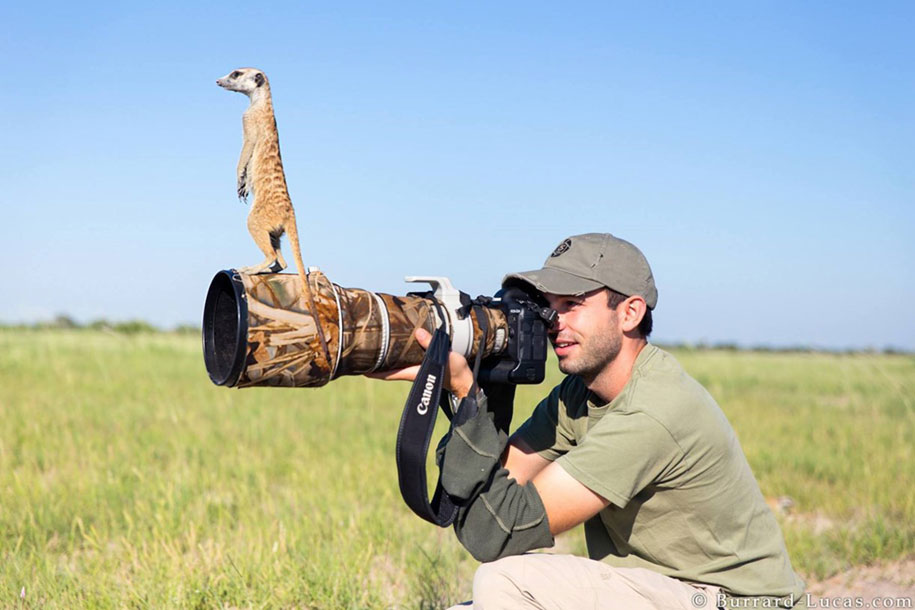 nature-photographer-behind-scenes-animals-21
