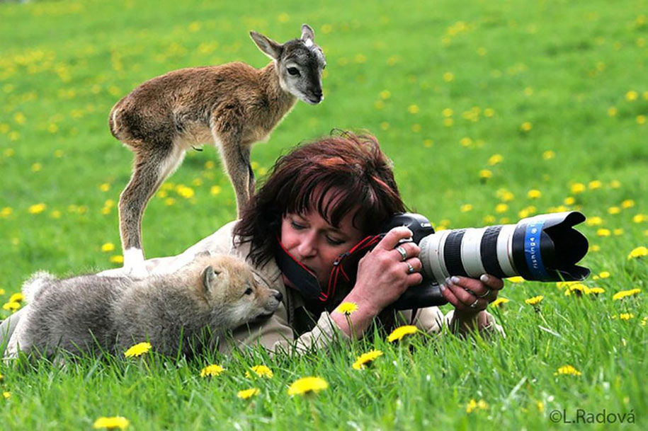nature-photographer-behind-scenes-animals-22