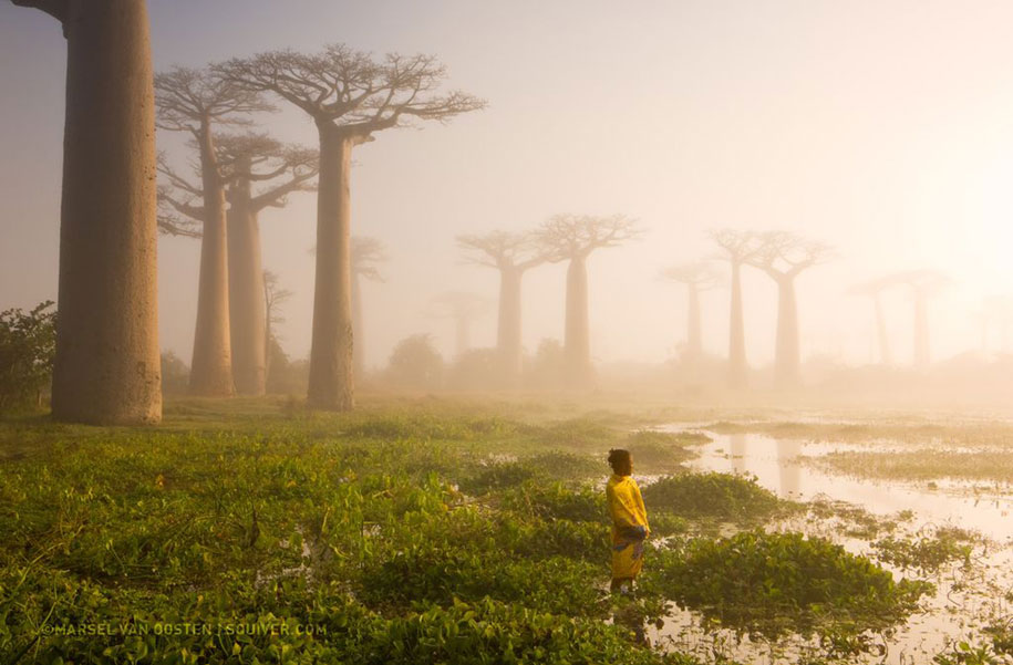 internet-favorite-picture-of-day-2015-national-geographic-4
