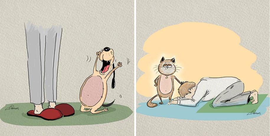 animals-pets-differences-cat-vs-dog-bird-born-7