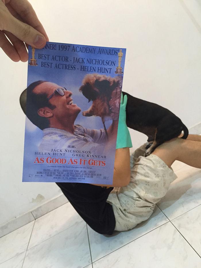 movie-posters-recreations-real-puppies-mashups-jaemy-choong-5