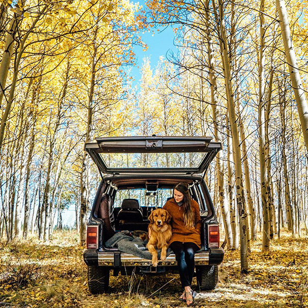 travelling-dog-aspen-hunter-lawrence-11