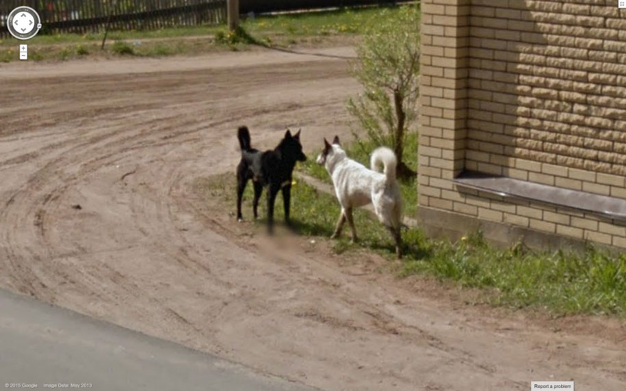 guy-travels-world-in-google-street-view-26