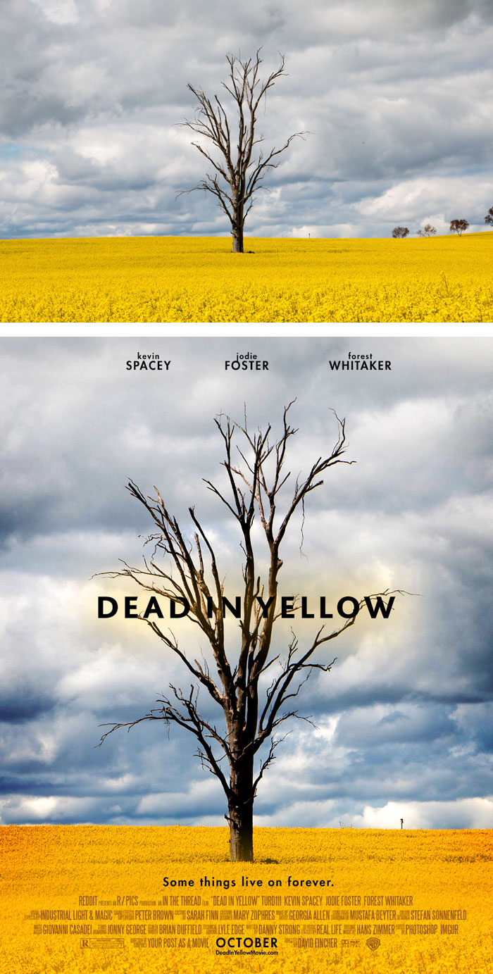 random-photos-turned-professional-movie-posters-your-post-as-a-movie-13