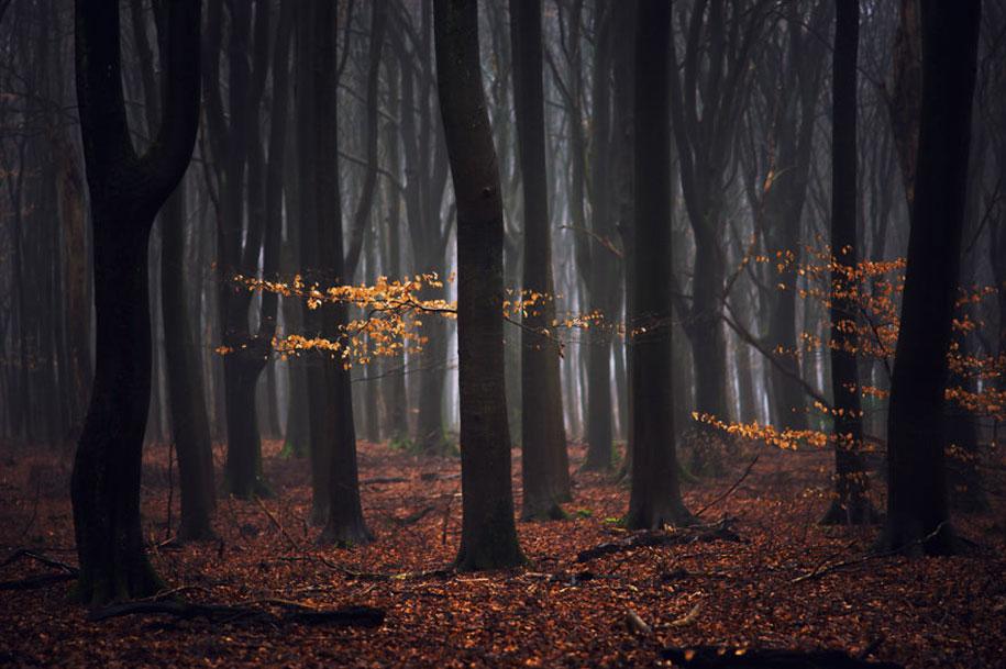 -amazing-netherland-photgraphy-albert-dros-16