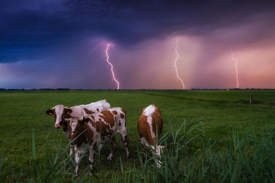-amazing-netherland-photgraphy-albert-dros-8