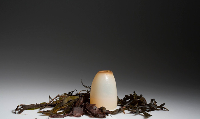 biodegradable-algae-plastic-replacement--ari-jonsson-3
