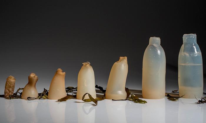 biodegradable-algae-plastic-replacement--ari-jonsson-4