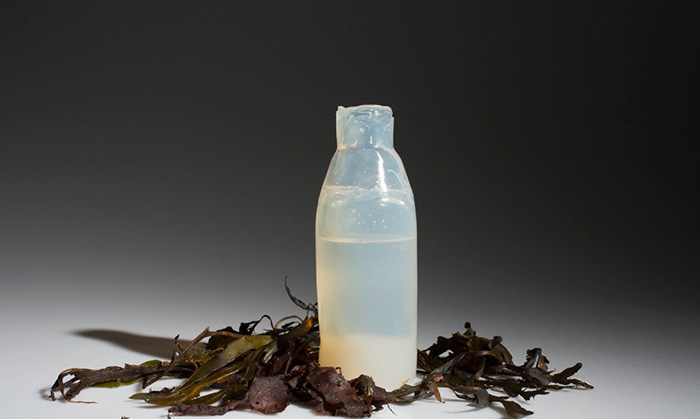 biodegradable-algae-plastic-replacement--ari-jonsson-7