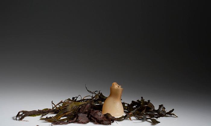 biodegradable-algae-plastic-replacement--ari-jonsson-8