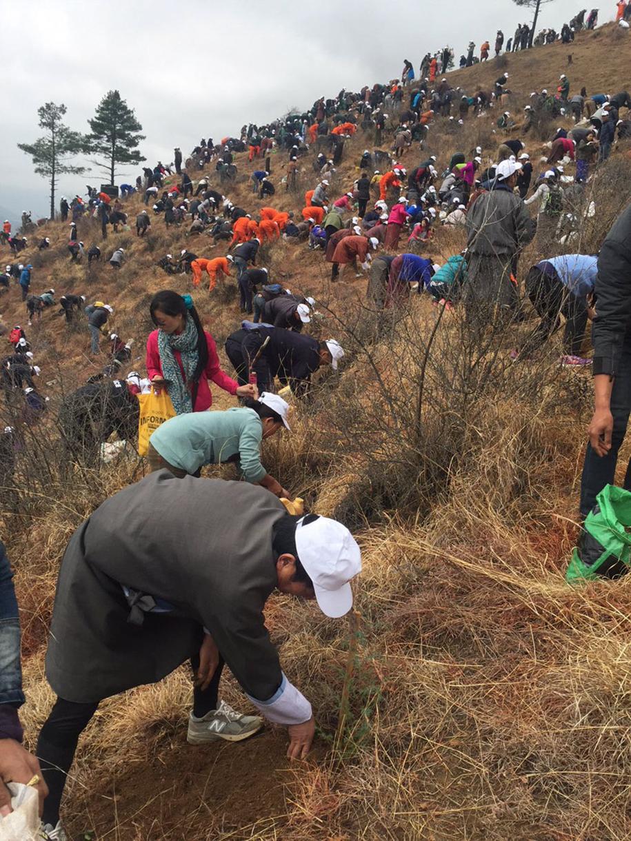 birth-new-prince-celebrated-planting-thousands-trees-bhutan-4