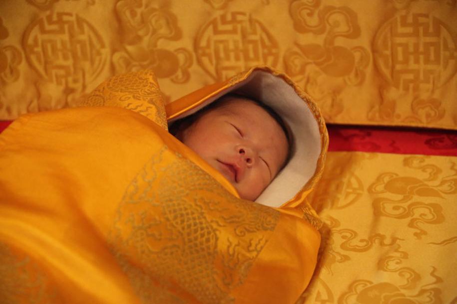 birth-new-prince-celebrated-planting-thousands-trees-bhutan-6