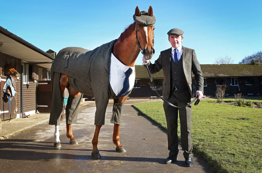 three-piece-suit-for-classy-horse-emma-sandham-king-1
