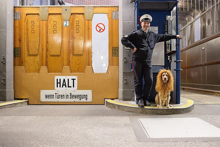dog-turned-into-lion-julia-marie-werner-7