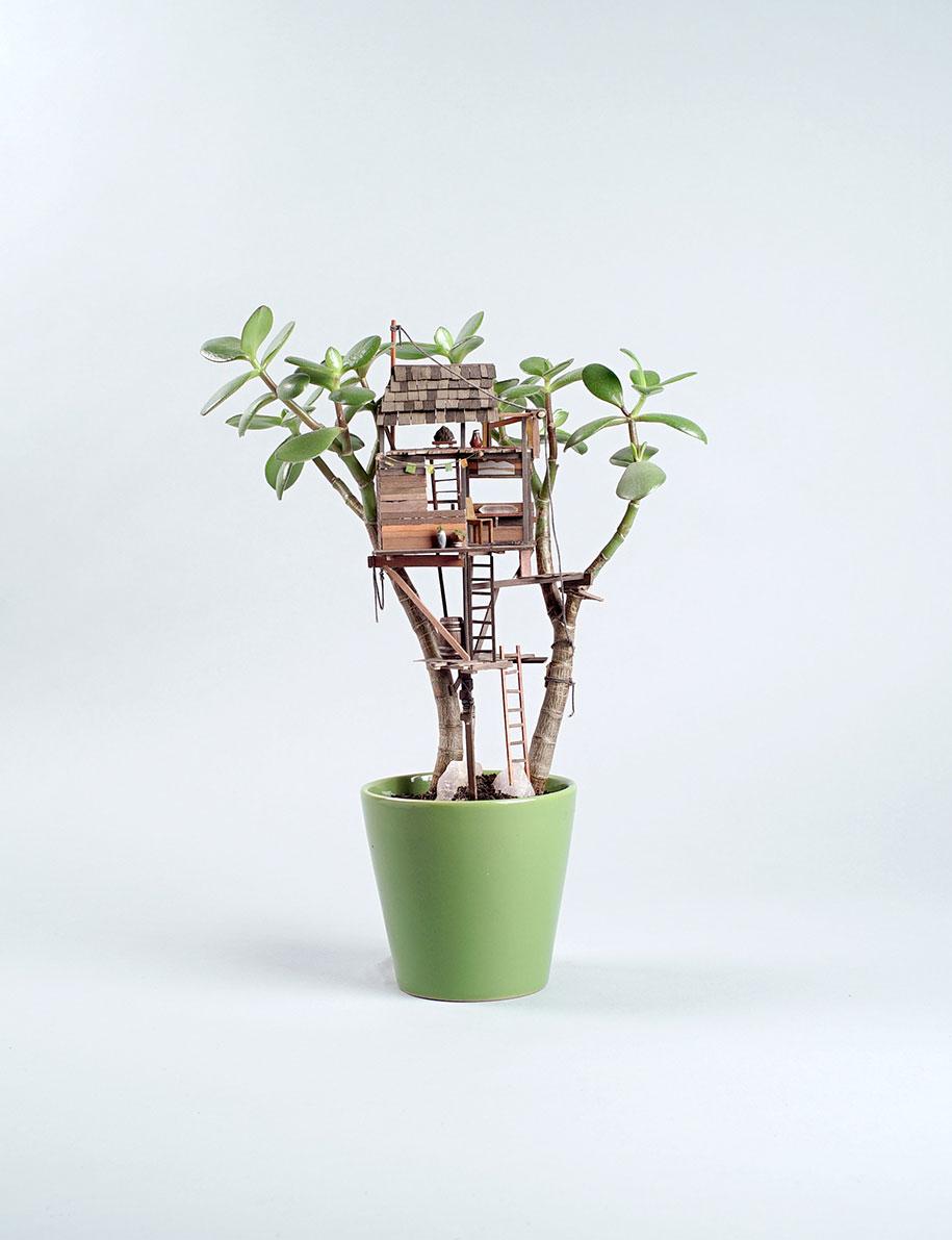 miniature-treehouse-houseplants-jedediah-corwyn-voltz-24