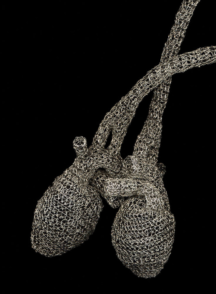 anatomical-wire-sculptures-heart-anne-mondro-3