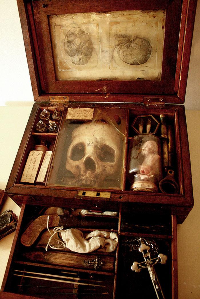 mysterious-skulls-skeletons-thomas-theodore-merrylin-home-london-12