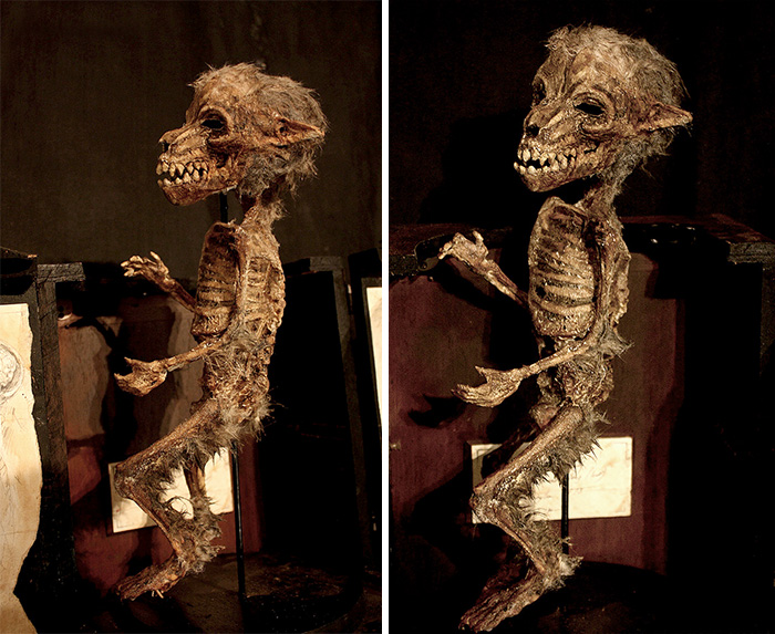 mysterious-skulls-skeletons-thomas-theodore-merrylin-home-london-2