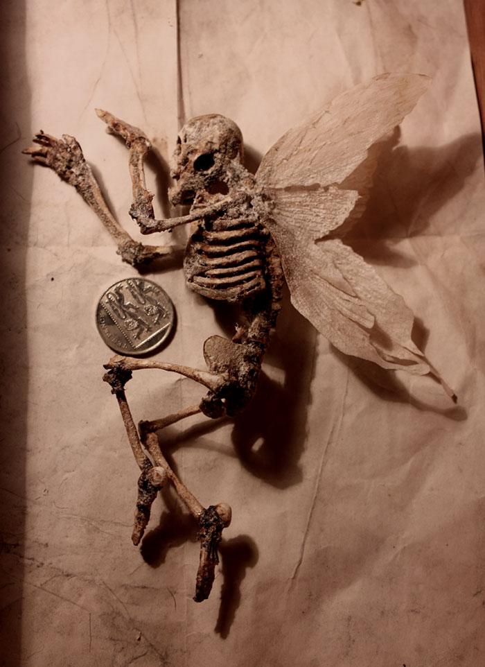 mysterious-skulls-skeletons-thomas-theodore-merrylin-home-london-9