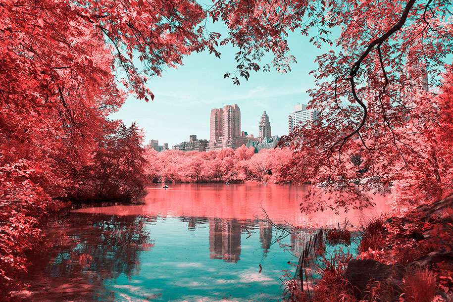 pink-colored-new-york-central-park-paolo-pettigiani-10