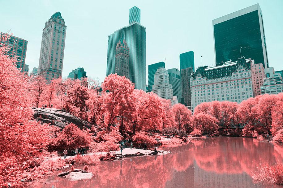 pink-colored-new-york-central-park-paolo-pettigiani-13